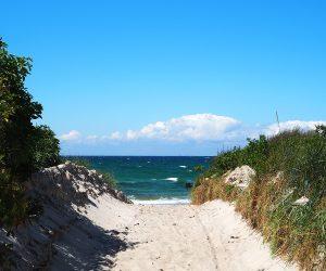 Der Strand von Zingst - Bild Nr. 1