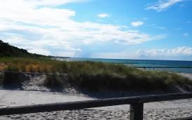 Der Strand von Zingst - Bild Nr. 2
